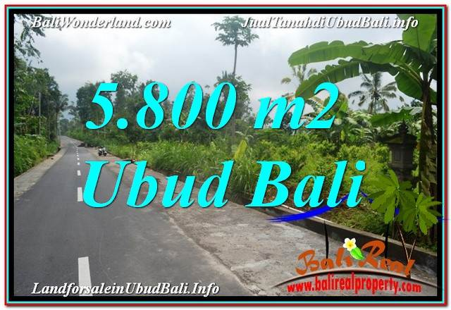Exotic LAND IN Ubud Tegalalang FOR SALE TJUB637