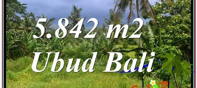 Beautiful 5,842 m2 LAND IN UBUD BALI FOR SALE TJUB638