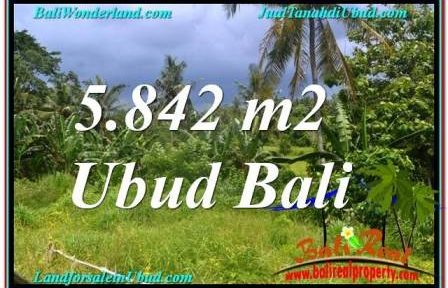 Exotic LAND IN Sentral / Ubud Center BALI FOR SALE TJUB638