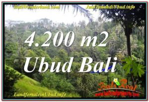Affordable PROPERTY 4,200 m2 LAND FOR SALE IN Sentral / Ubud Center TJUB639