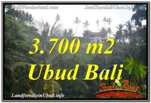 Affordable PROPERTY UBUD BALI 3,700 m2 LAND FOR SALE TJUB640