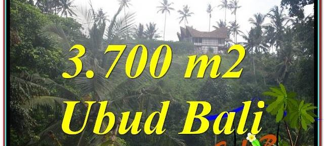 Affordable PROPERTY UBUD BALI 3,700 m2 LAND FOR SALE TJUB640