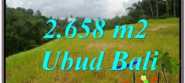 Exotic PROPERTY 2,658 m2 LAND IN Sentral / Ubud Center FOR SALE TJUB641