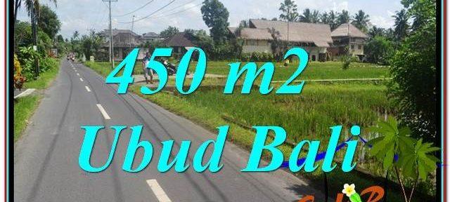 LAND SALE IN Sentral / Ubud Center BALI TJUB647
