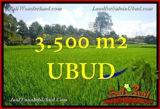 Exotic PROPERTY LAND IN UBUD FOR SALE TJUB660