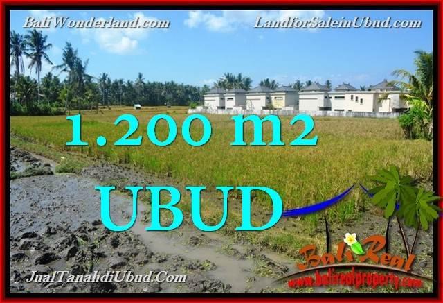 Affordable LAND IN Sentral Ubud FOR SALE TJUB663