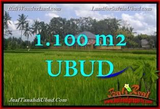 FOR SALE Affordable PROPERTY 1,100 m2 LAND IN UBUD BALI TJUB651