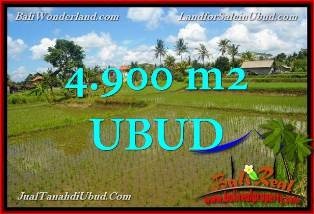 Magnificent LAND IN Ubud Pejeng BALI FOR SALE TJUB652