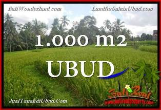 Exotic PROPERTY 1,000 m2 LAND FOR SALE IN Ubud Tegalalang TJUB653