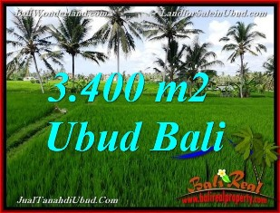 Beautiful PROPERTY 3,400 m2 LAND IN UBUD BALI FOR SALE TJUB656