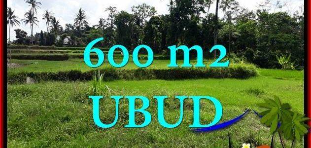 Beautiful PROPERTY Ubud Pejeng 600 m2 LAND FOR SALE TJUB657