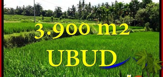 FOR SALE Exotic PROPERTY LAND IN Ubud Pejeng BALI TJUB658