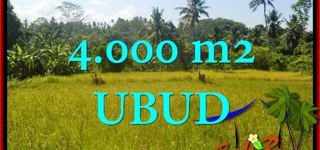 Affordable LAND SALE IN Ubud Gianyar BALI TJUB661