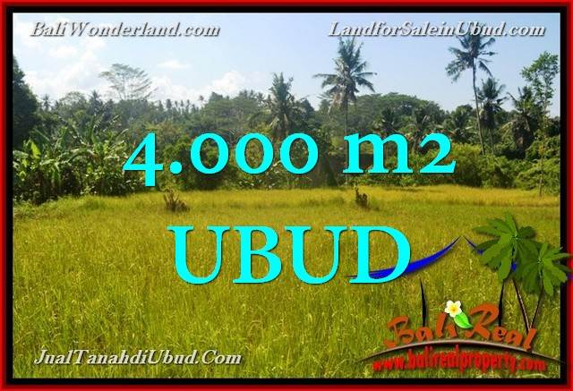 FOR SALE Magnificent PROPERTY 4,000 m2 LAND IN Ubud Gianyar TJUB661