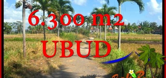 Affordable LAND FOR SALE IN Sentral Ubud BALI TJUB662