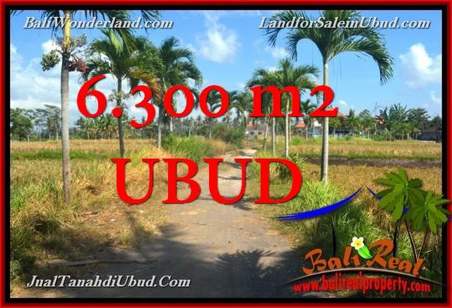 Magnificent PROPERTY 6,300 m2 LAND IN UBUD FOR SALE TJUB662