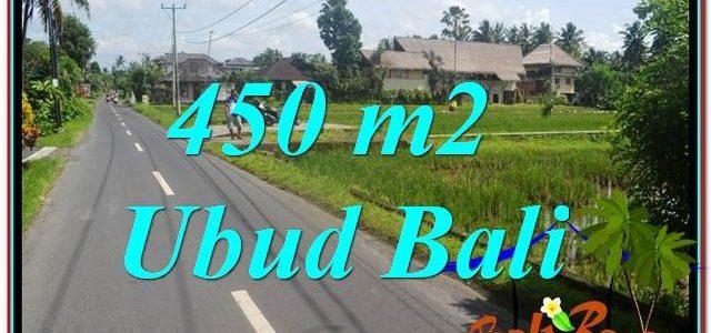 FOR SALE Magnificent PROPERTY LAND IN Sentral / Ubud Center BALI TJUB647