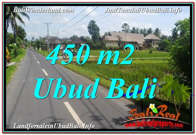 FOR SALE Beautiful PROPERTY 450 m2 LAND IN UBUD TJUB647