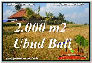 Exotic PROPERTY UBUD TEGALALANG 2,000 m2 LAND FOR SALE TJUB669