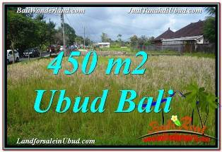 Affordable LAND FOR SALE IN UBUD TJUB671