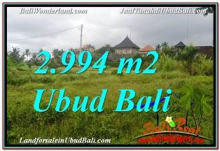 Exotic 2,994 m2 LAND FOR SALE IN SENTRAL UBUD TJUB672