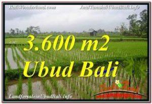 Magnificent LAND SALE IN UBUD TJUB673