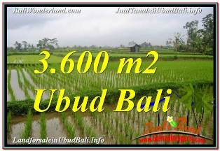Magnificent LAND SALE IN UBUD TJUB673