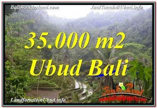 Beautiful 35,000 m2 LAND SALE IN UBUD TEGALALANG TJUB674