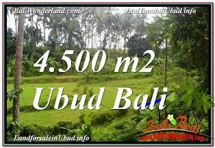 Exotic LAND SALE IN UBUD TJUB675
