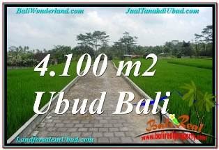 Exotic PROPERTY 4,100 m2 LAND IN SENTRAL UBUD BALI FOR SALE TJUB676