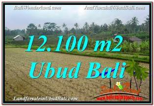 FOR SALE Magnificent PROPERTY LAND IN UBUD BALI TJUB677