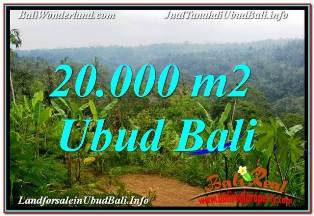 FOR SALE Beautiful PROPERTY 20,000 m2 LAND IN UBUD PAYANGAN BALI TJUB678