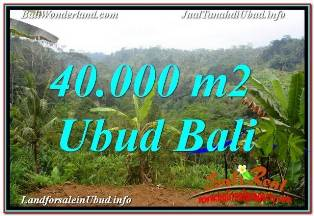 UBUD PAYANGAN 40,000 m2 LAND FOR SALE TJUB679