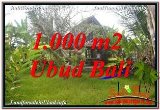 Exotic LAND IN UBUD BALI FOR SALE TJUB680