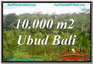 FOR SALE Exotic LAND IN UBUD TAMPAK SIRING BALI TJUB681