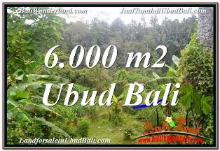 Magnificent 6,000 m2 LAND SALE IN UBUD BALI TJUB682