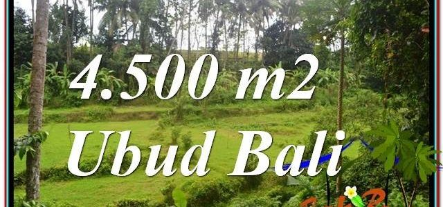 Beautiful LAND SALE IN UBUD BALI TJUB675