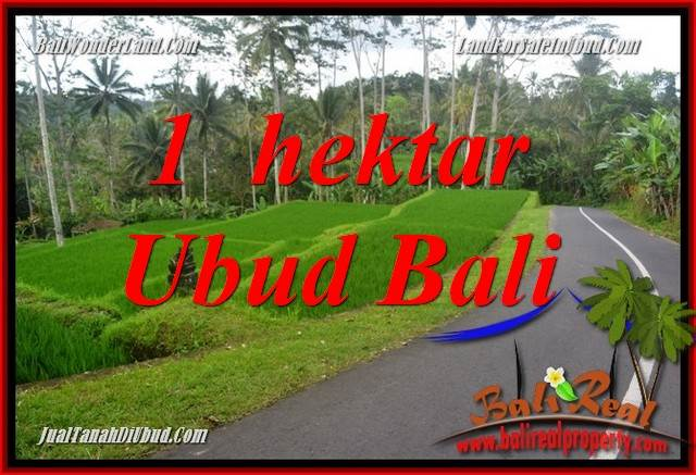 Magnificent 10,000 m2 Land for sale in Ubud Tegalalang TJUB683