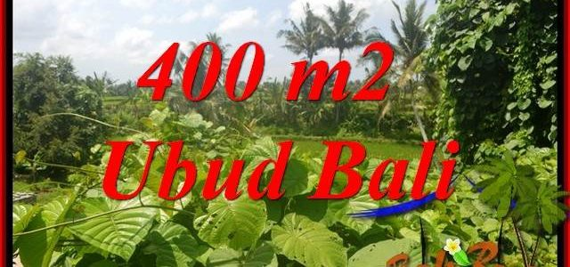 Affordable Property Ubud Land for sale TJUB684