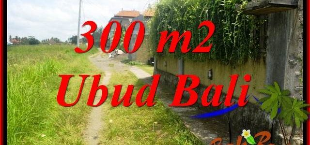 Magnificent Property Land for sale in Ubud Bali TJUB687