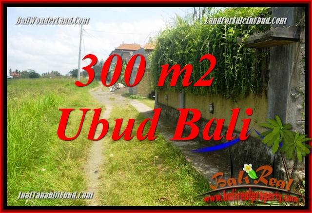 Magnificent Property Land in Ubud Bali for sale TJUB687