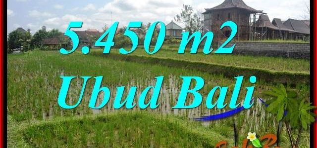 Exotic Land for sale in Ubud TJUB688