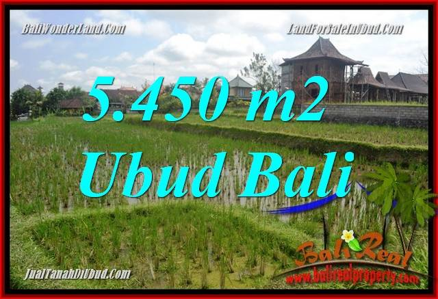 Magnificent 5,450 m2 Land in Sentral Ubud for sale TJUB688