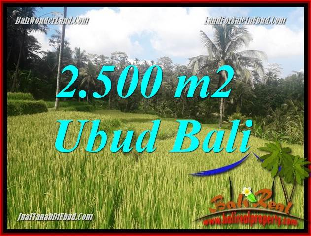 Magnificent Property Land in Ubud Bali for sale TJUB690