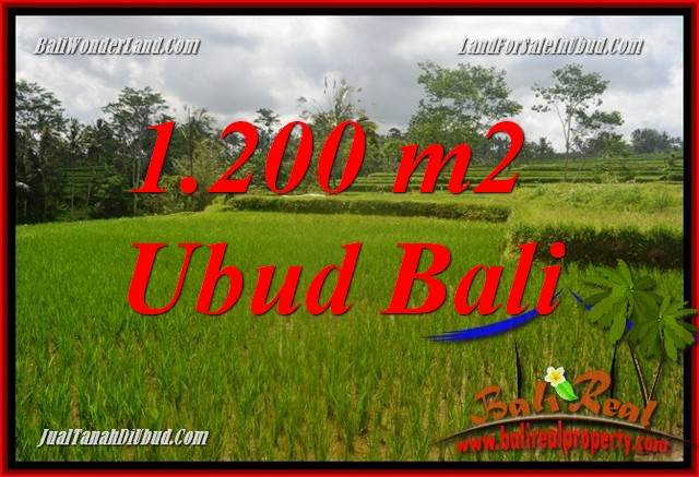 Beautiful Property Land sale in Ubud Bali TJUB693