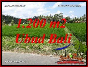 1,200 m2 Land sale in Ubud Bali TJUB694