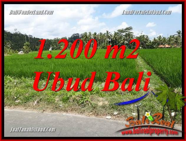 Magnificent Land sale in Ubud TJUB694