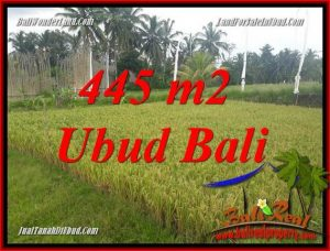 445 m2 Land sale in Ubud Bali TJUB695