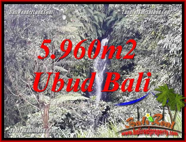 Magnificent Property Ubud Bali Land for sale TJUB696