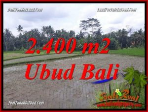 Beautiful Property 2,400 m2 Land in Ubud Pejeng Bali for sale TJUB697
